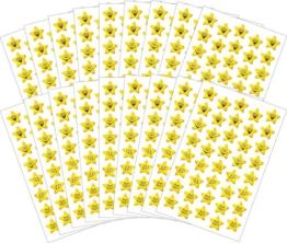 Avery Zweckform 58209 Belohnung Sticker Set Lachende Stern Gesichter (Vorteils-Pack) 720 Aufkleber -