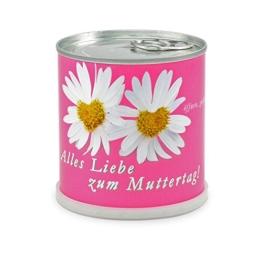 Blumen in der Dose Muttertag - Gänseblümchen -
