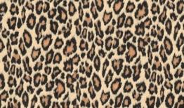 Fablon Klebefolie Leopard, 45 cm x 2 m -