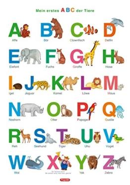 Fragenbär-Lernposter: Mein erstes ABC der Tiere, L 70 x 100 cm: Gerollt, matt folienbeschichtet, abwischbar (Lerne mehr mit Fragenbär) -