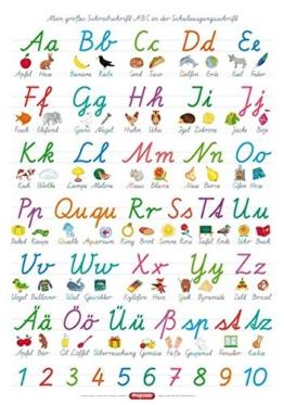 Fragenbär-Lernposter: Mein großes Schreibschrift-ABC in der Schulausgangsschrift (SAS), L 70 x 100 cm (Lerne mehr mit Fragenbär) -